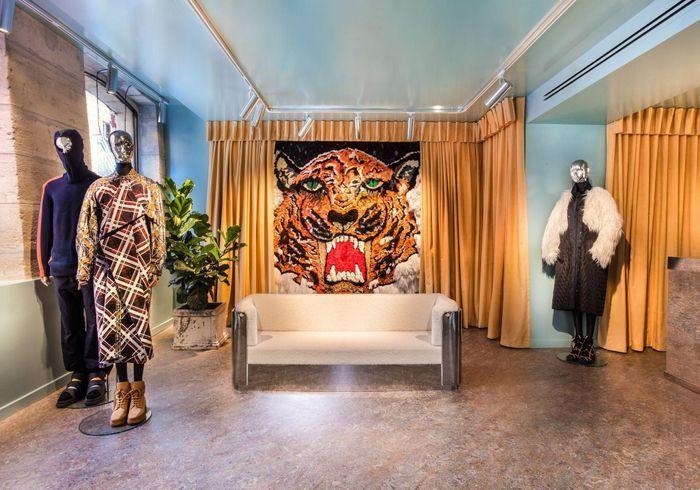 La plus tigre sauvage : Kenzo